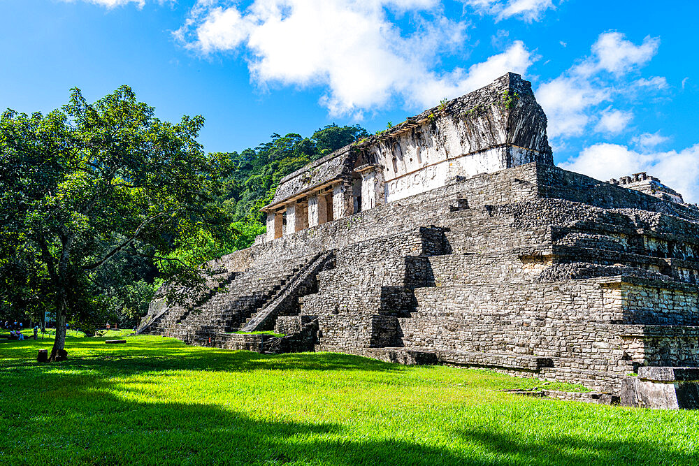 Unesco world heritage site the Maya ruins of Palenque, Chiapas, Mexico - 1184-5503