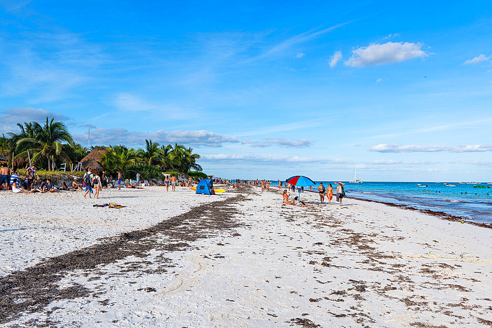 White sand beach in Tulum, Quintana Roo, Mexico, North America - 1184-5542