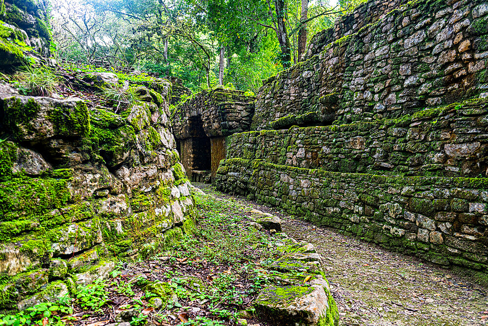 Archaeological Maya site of Yaxchilan in the jungle of Chiapas, Mexico, North America - 1184-5568