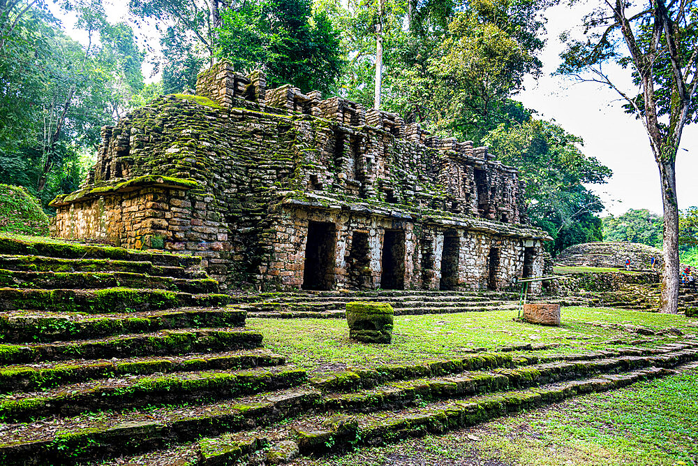 Archaeological Maya site of Yaxchilan in the jungle of Chiapas, Mexico, North America - 1184-5571