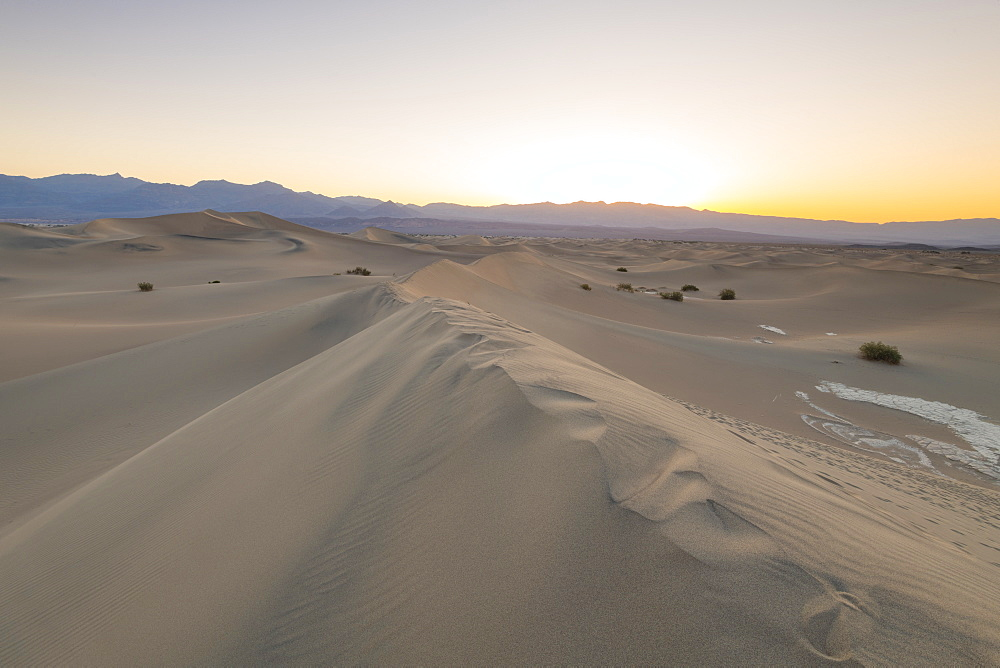 Mesquite flat sand dunes in Death Valley National Park, California, United States of America, North America - 1186-1126