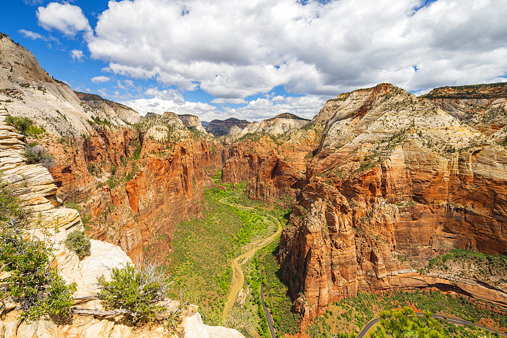 View down Zion Canyon from Angels Landing, Zion National Park, Utah, United States of America, North America