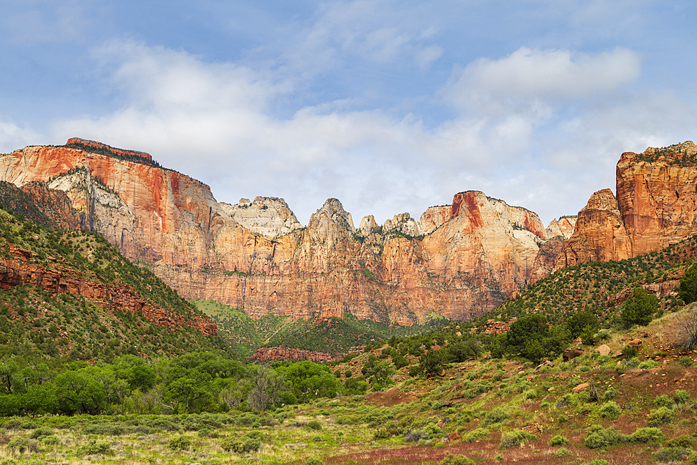 Temples and Towers of the Virgin, Zion National Park, Utah, United States of America, North America