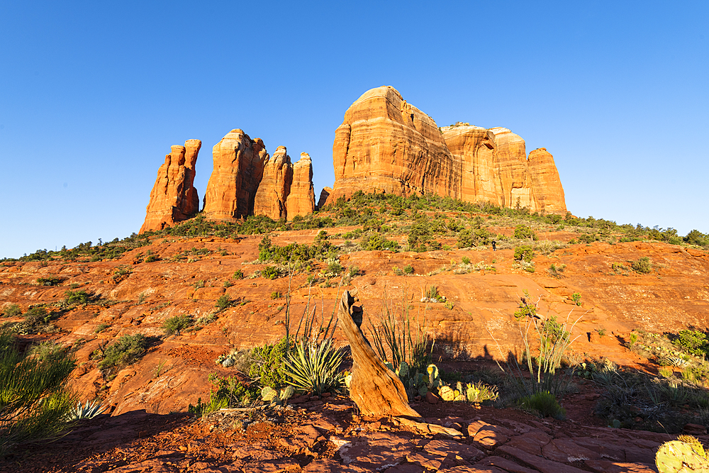 Cathedral Rock, Sedona, Arizona, United States of America, North America
