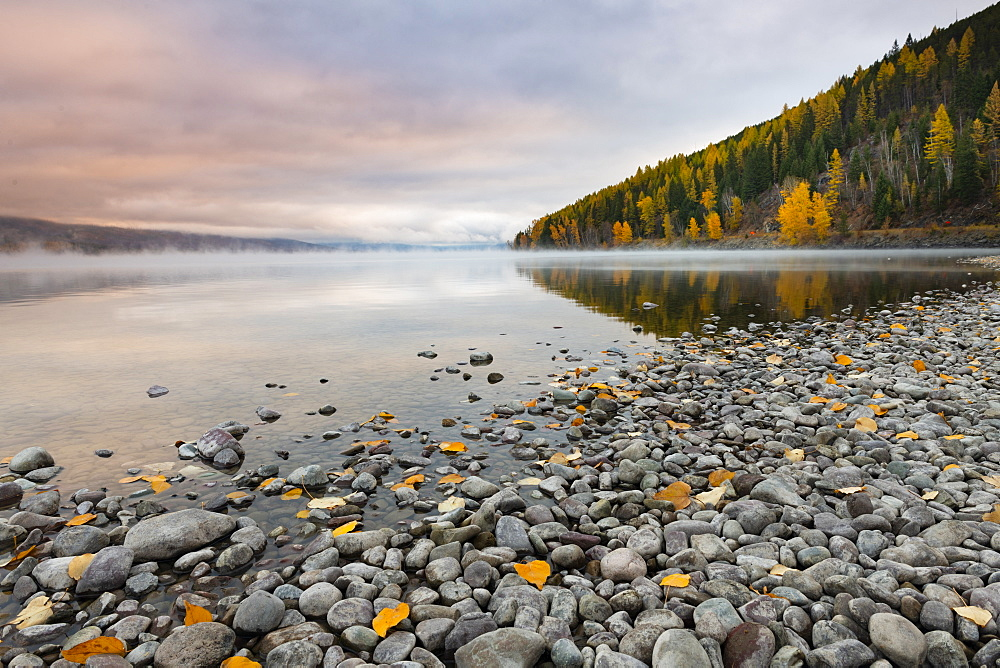 Sunrise on the shore of Lake McDonald, Glacier National Park, Montana, United States of America, North America