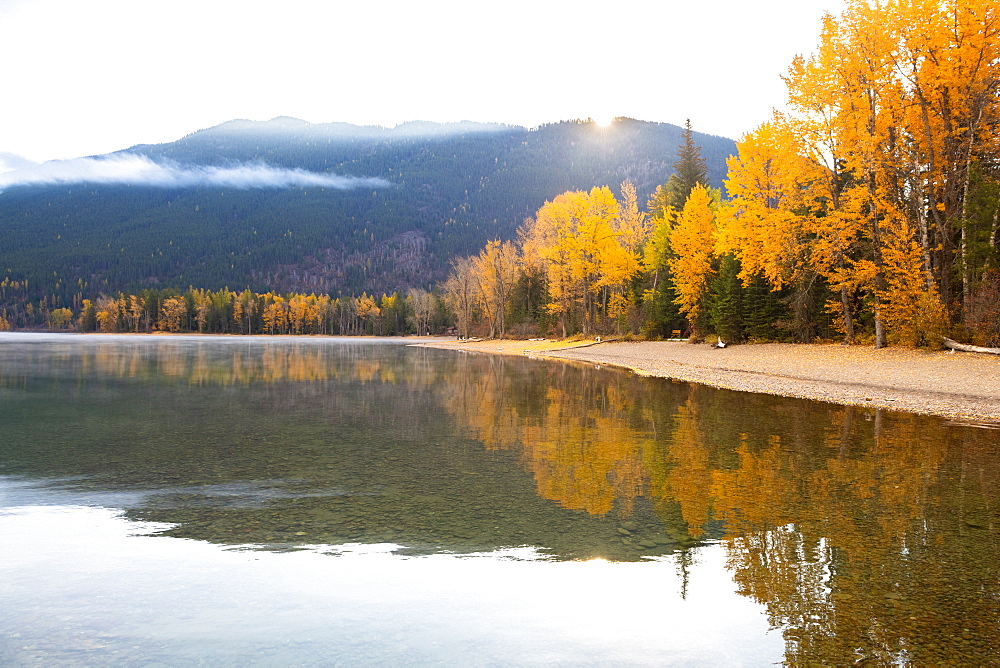 Autumn colors of Lake McDonald Glacier National Park, Montana, USA