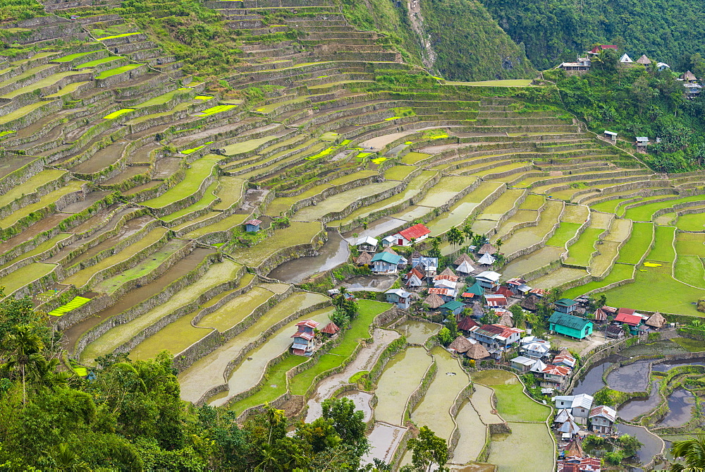 Batad, UNESCO World Heritage Site, Luzon, Philippines, Southeast Asia, Asia