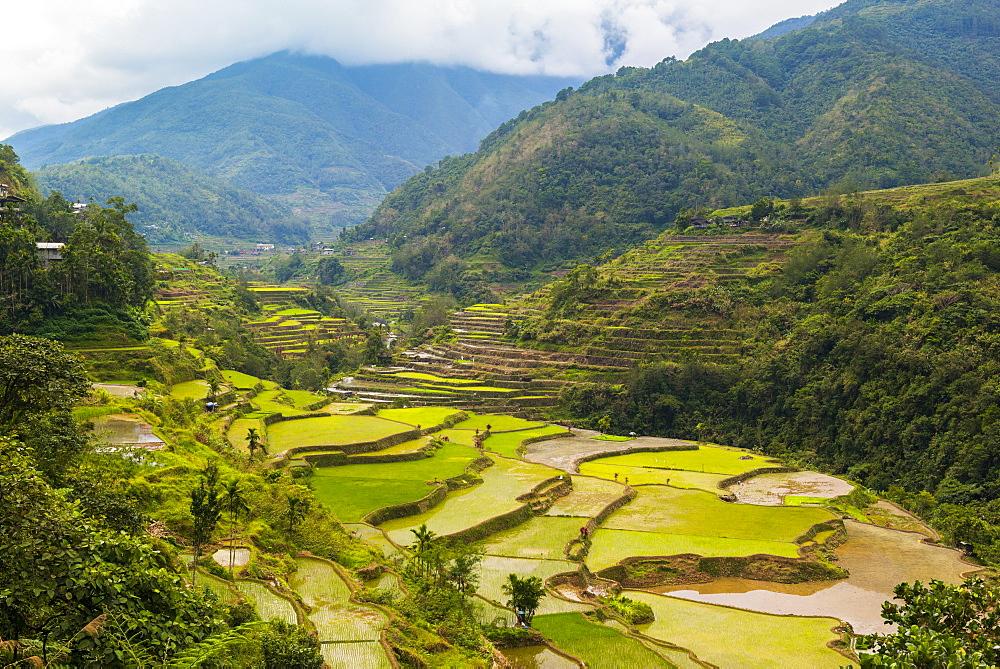 Hapao, Luzon, Philippines, Southeast Asia, Asia