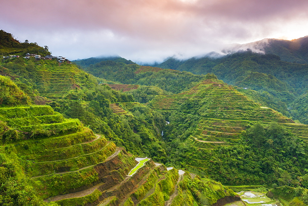 Rice Terraces, Banaue, UNESCO World Heritage Site, Luzon, Philippines, Southeast Asia, Asia