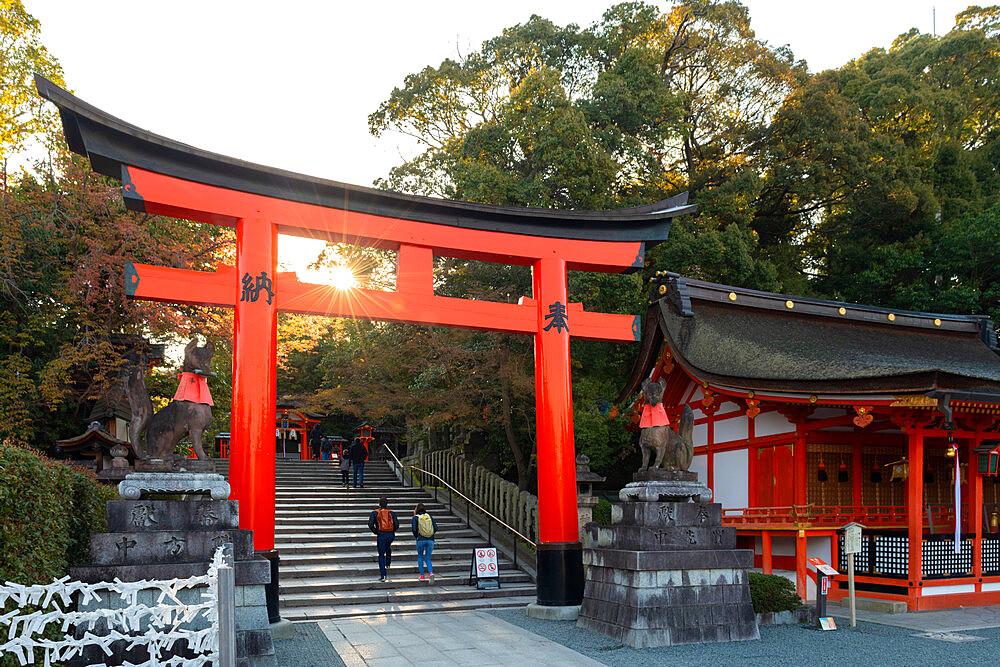 Fushimi Inari Taisha shrine and torii gates - 1186-817