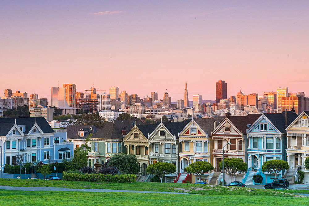 The Painted Ladies in Alamo Square San Francisco, California, United States - 1186-834