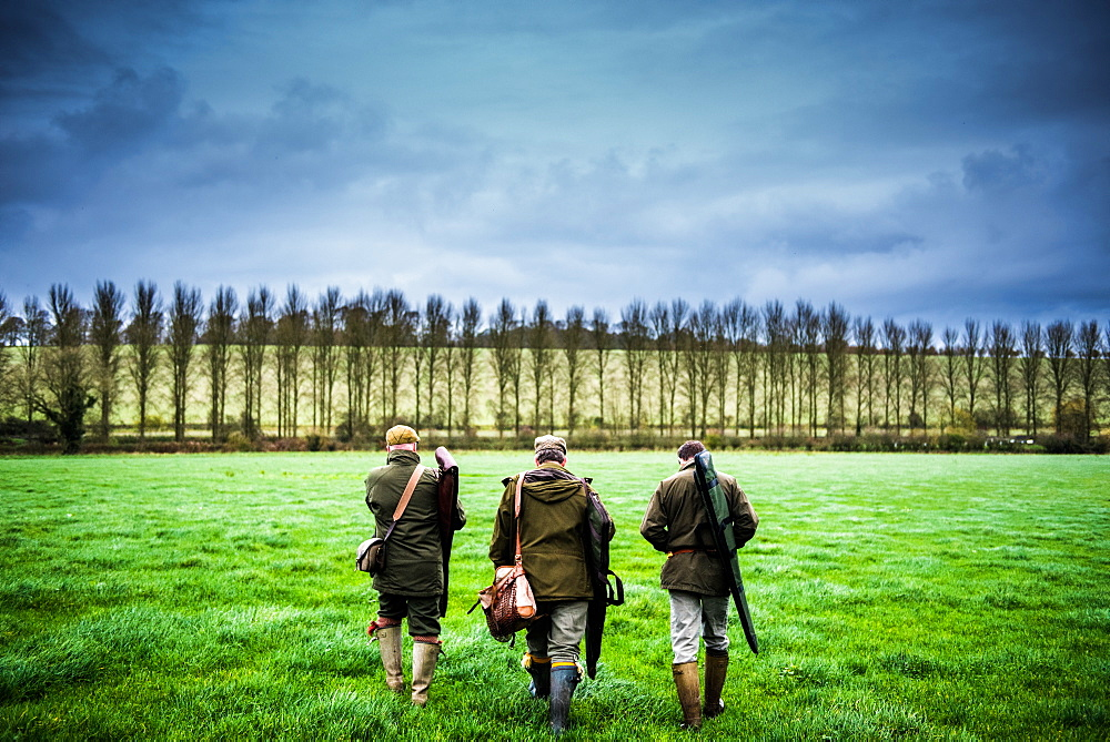Three guns walking towards a drive, Wiltshire, England, United Kingdom, Europe