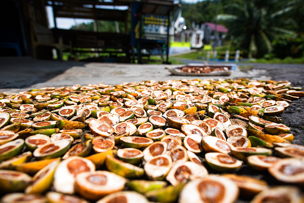 Betel nuts being sold in Pulua Weh, Sumatra, Indonesia, Southeast Asia