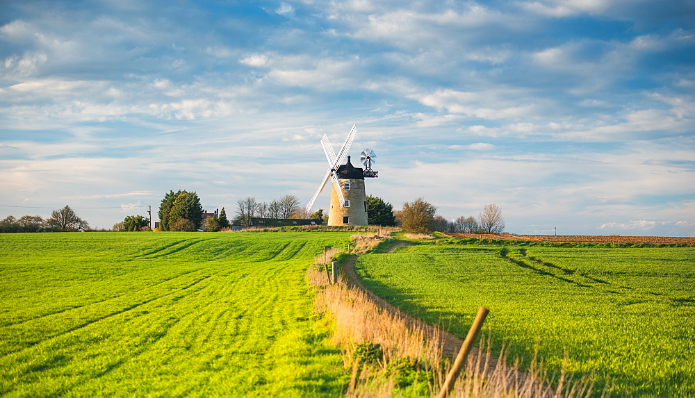Windmill in Great Haseley in Oxfordshire, England, United Kingdom, Europe