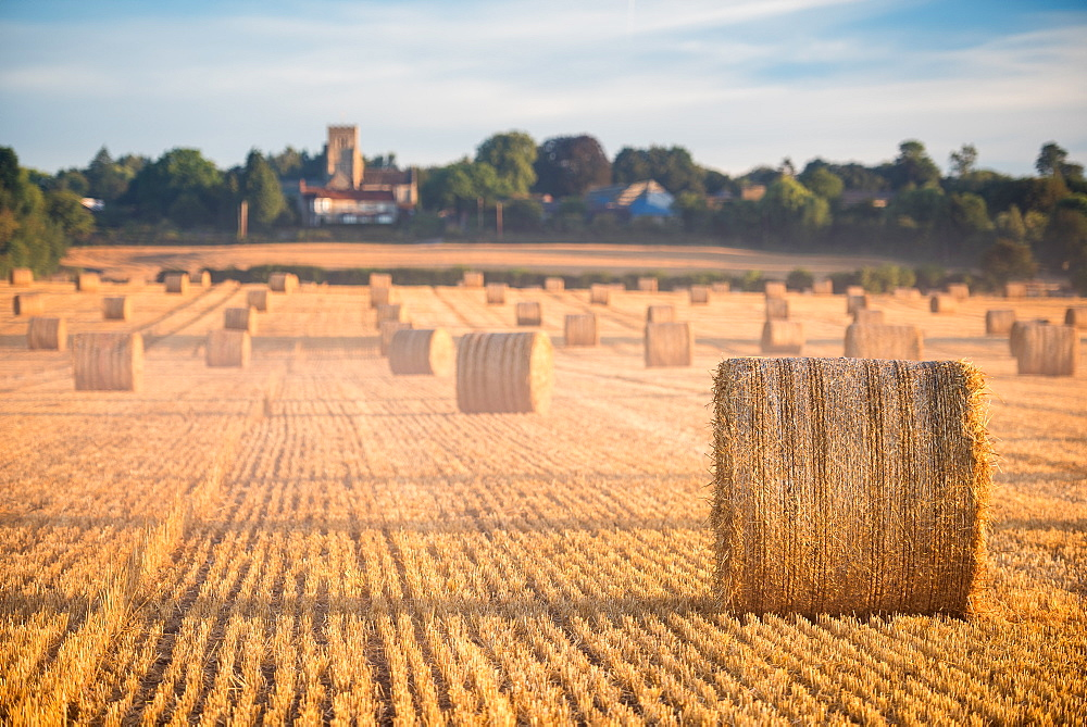 Hay bales in the Cuddesdon countryside, Oxfordshire, England, United Kingdom, Europe - 1199-441