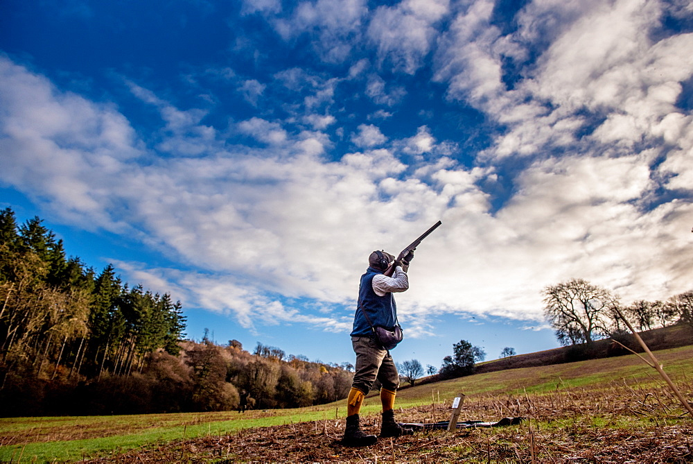 Gun shooting on a pheasant shoot, United Kingdom, Europe - 1199-478
