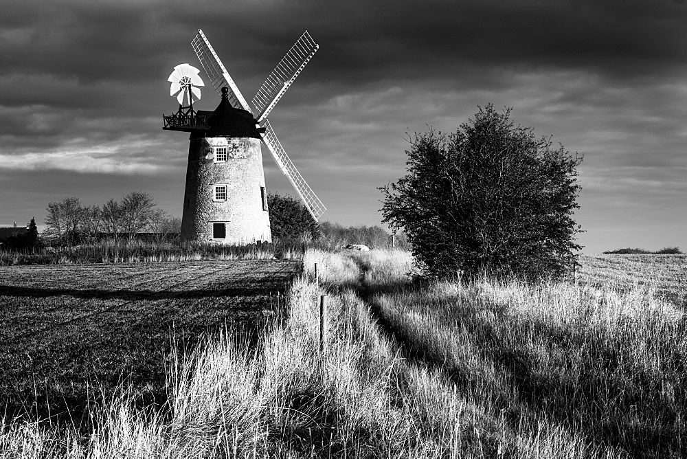 Great Haseley Windmill, Oxfordshire, England, United Kingdom, Europe