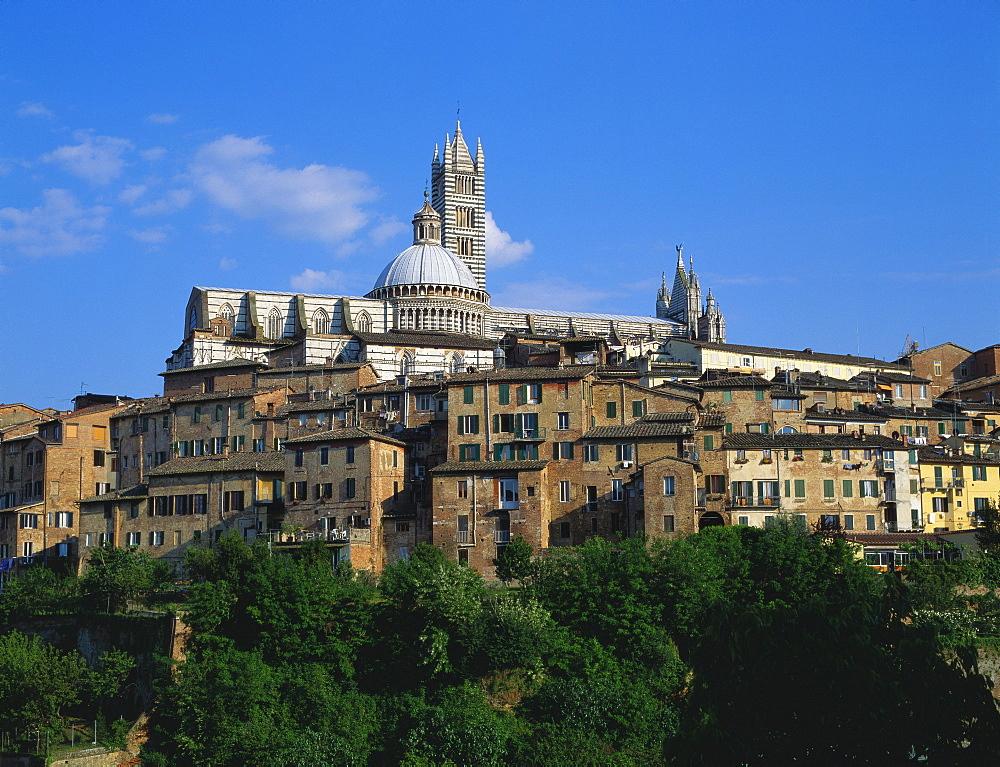 Cathedral, Siena, Tuscany, Italy - 120-4375