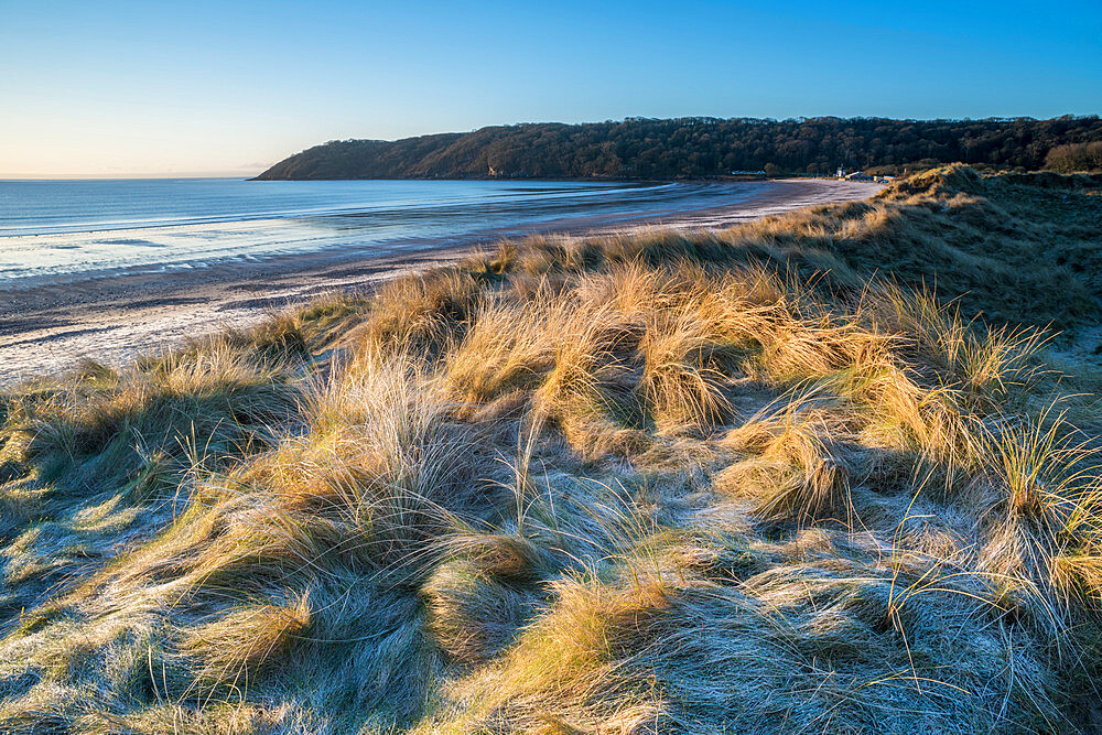 Sand dunes and frost, Oxwich Bay, Gower Peninsula, South Wales, United Kingdom, Europe - 1200-127