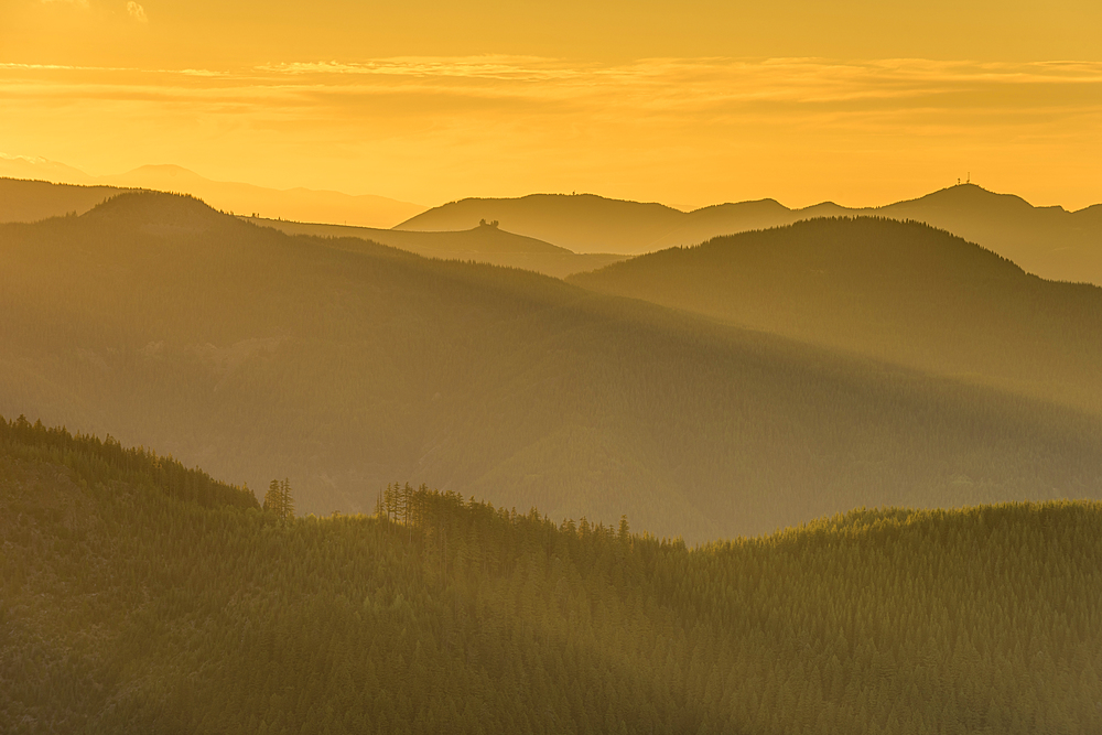 Mountain peaks and forest at sunset, Washington State, United States of America, North America