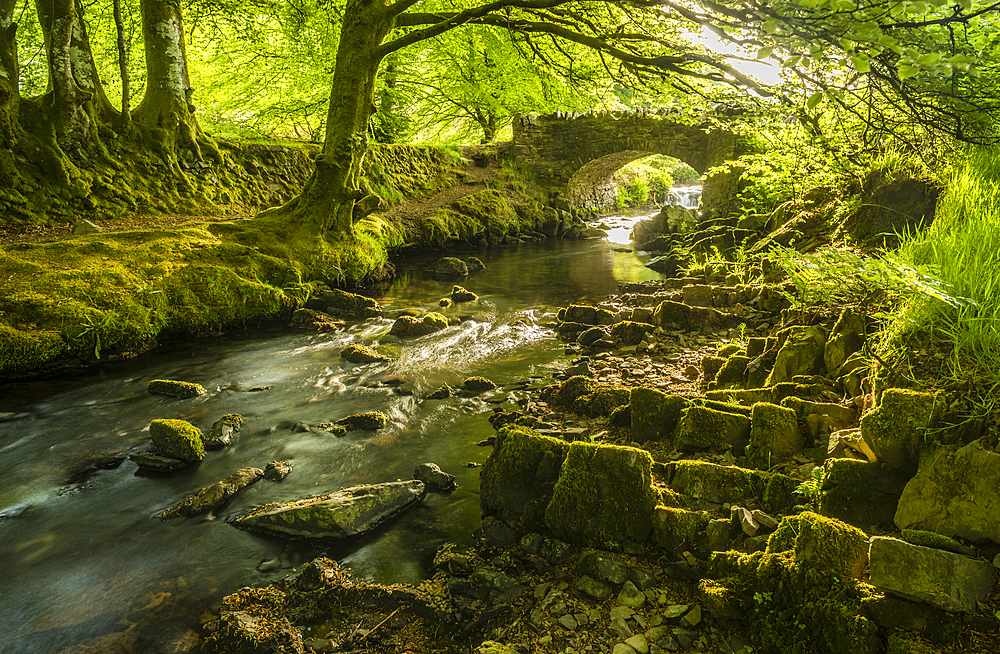 Stream and Robber's Bridge, Exmoor, Somerset, England, United Kingdom, Europe