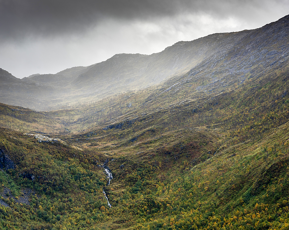 Forest, mountains and waterfall, Torsken, Senja, Norway.