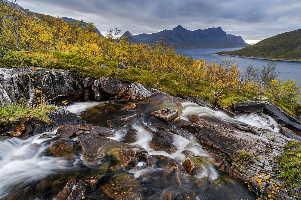 Waterfall and autumn colour in Anderdalen National Park, Senja, Norway, Scandinavia, Europe - 1200-287