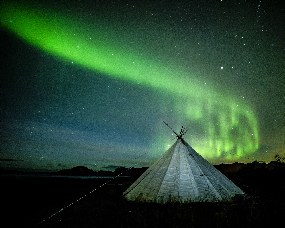 Aurora borealis (Northern Lights) over a traditional Lavvu, Senja, Norway, Scandinavia, Europe