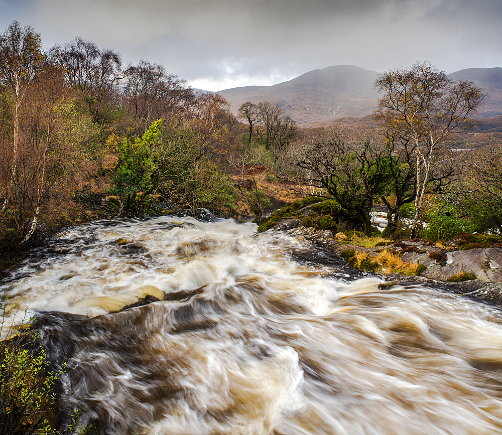 River in spate, Killarney National Park, County Kerry, Munster, Republic of Ireland, Europe