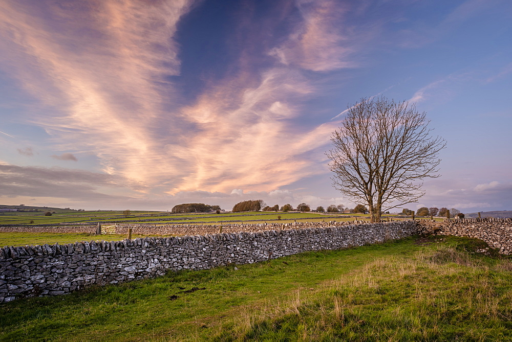 Stone walls and fields at sunset in autumn, Sheldon, Peak District National Park, Derbyshire, England, United Kingdom, Europe