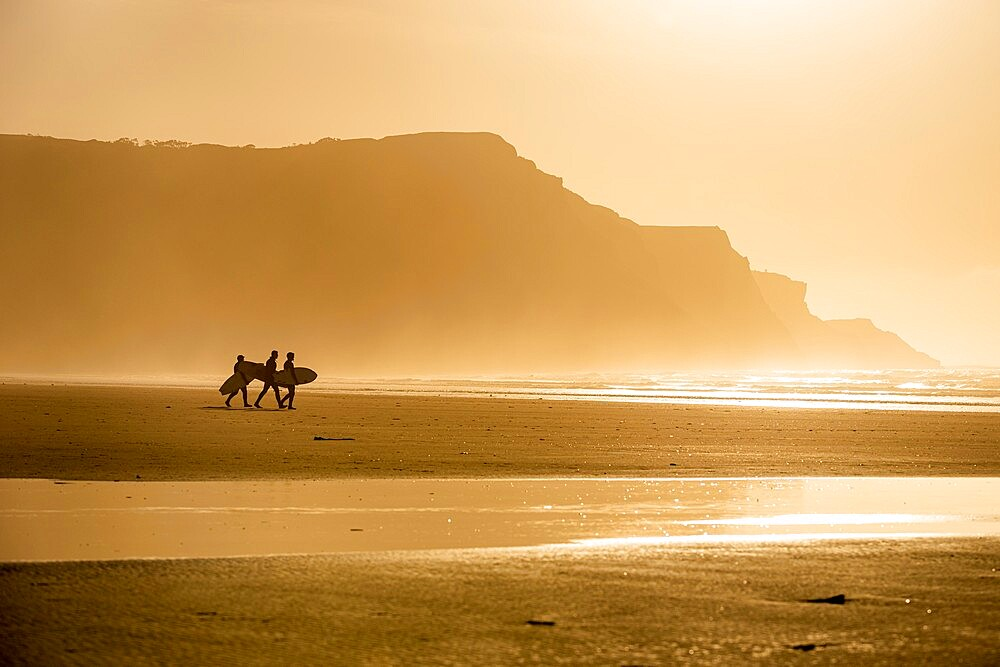 People carrying surfboards while walking along beach in the evening sunlight, Rhossili, Gower Peninsula, Swansea, Wales. - 1200-383