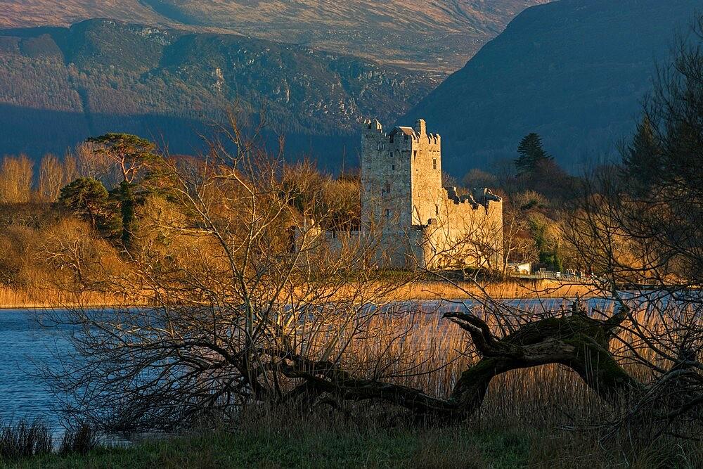 Ross Castle in the evening sunlight, Killarney. - 1200-433
