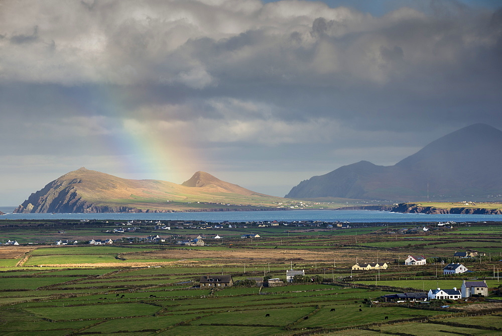 Rainbow over hills and dwellings, looking towards Clogher and Rosroe, Dingle Peninsula, County Kerry, Ireland, British Isles