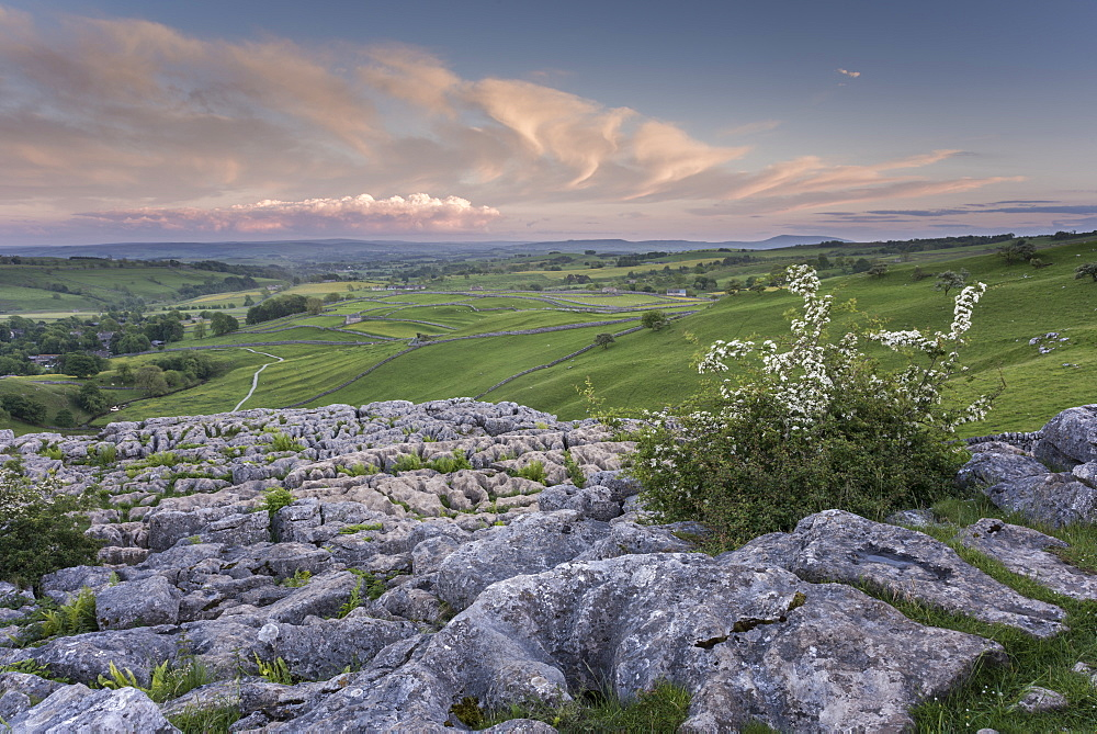 View of limestone pavement, Malham Cove, Malham, Yorkshire Dales National Park, North Yorkshire, England, United Kingdom, Europe - 1200-75