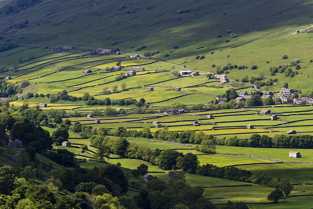 View of stone barns and traditional meadows, Gunnerside, Swaledale, Yorkshire Dales National Park, North Yorkshire, England, United Kingdom, Europe - 1200-76