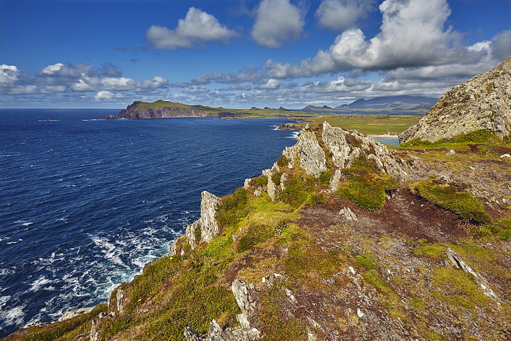 A view from Clogher Head towards Sybil Point, at the western end of the Dingle Peninsula, County Kerry, Munster, Republic of Ireland, Europe - 1202-106