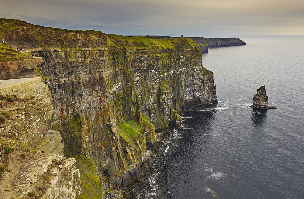 The Cliffs of Moher, near Lahinch, County Clare, Munster, Republic of Ireland, Europe - 1202-113