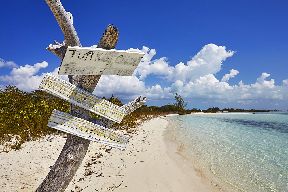 The shore of Little Water Cay, a nature reserve island off the northern tip of Providenciales, Turks and Caicos, in the Caribbean, West Indies, Central America