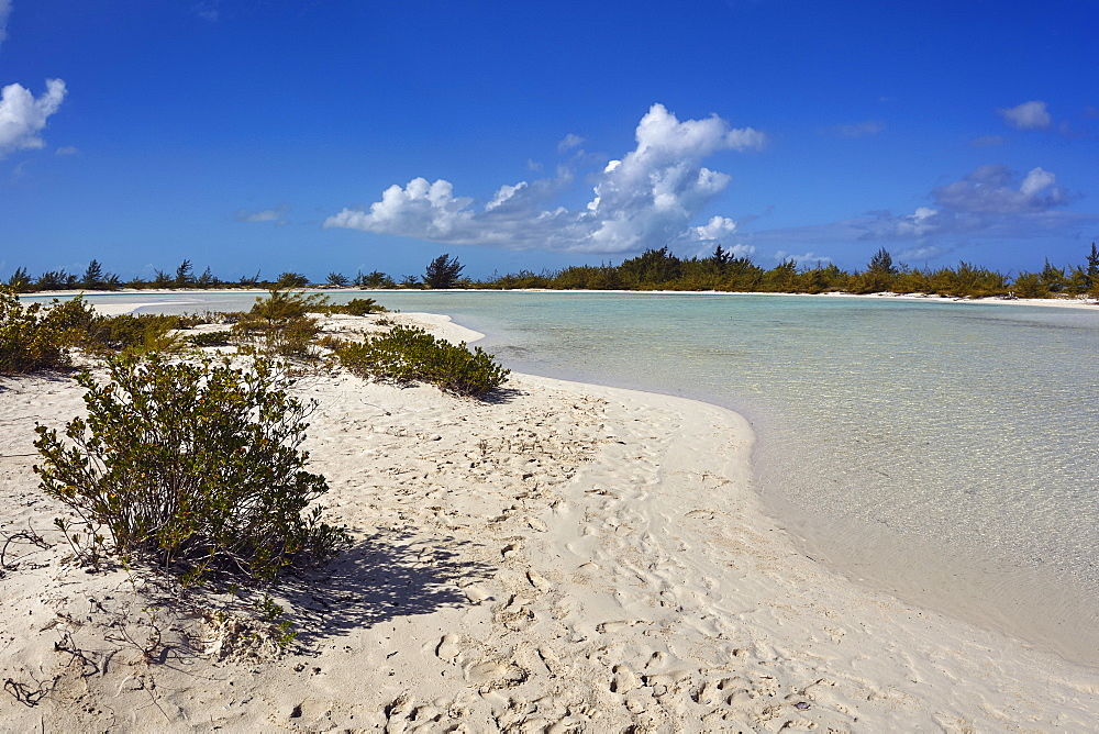 A sand bar on Water Cay, off the northern tip of Providenciales, Turks and Caicos, in the Caribbean.