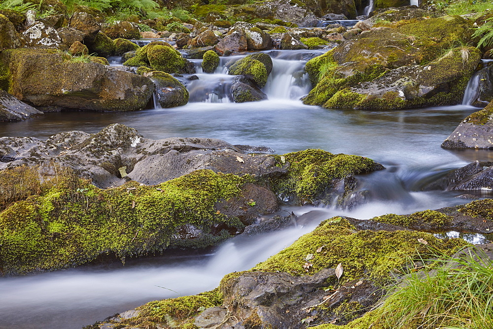 A woodland stream, the East Okement River, flowing off the northern slopes of Dartmoor National Park, near Okehampton, Devon, England, United Kingdom, Europe