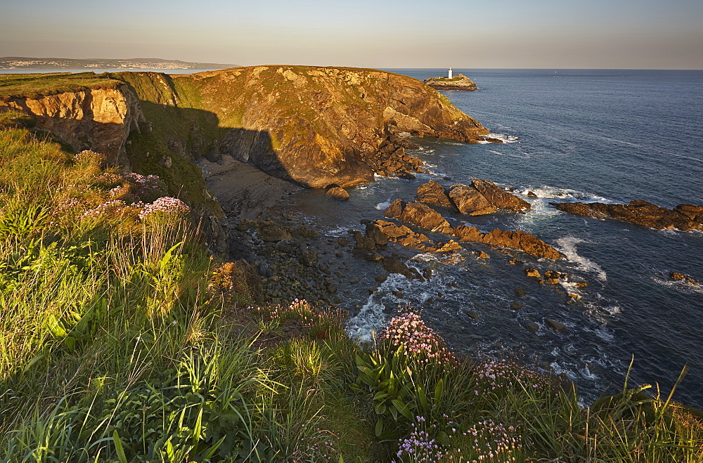 The cliffs of Godrevy Point, with Godrevey Island and Lighthouse beyond, on Cornwall's Atlantic coast, near Hayle, west Cornwall - 1202-306