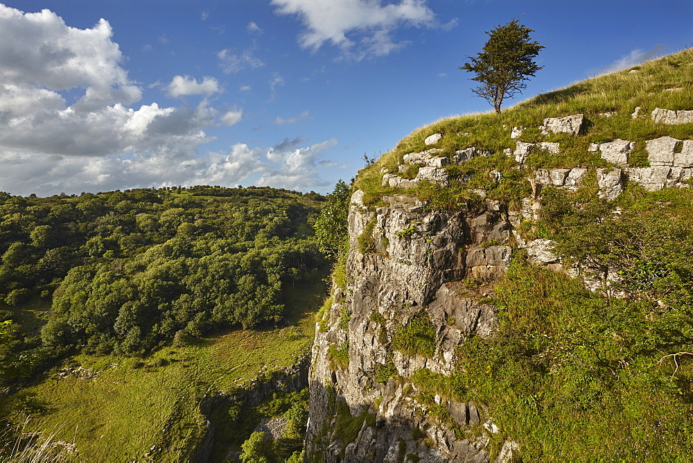 The limestone cliffs of Cheddar Gorge, in the Mendip Hills, near Cheddar, in Somerset, Great Britain.