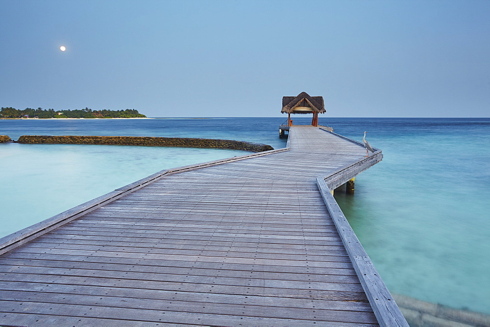 Kuramathi Island, Rasdhoo atoll, Ari atoll, Maldives, Indian Ocean, Asia - 1202-38