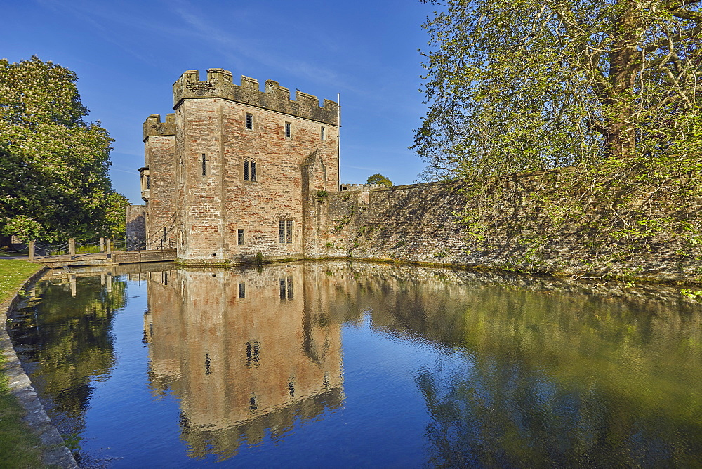 The historic Bishop's Palace and moat, Wells Cathedral, in Wells, Somerset, England, United Kingdom, Europe