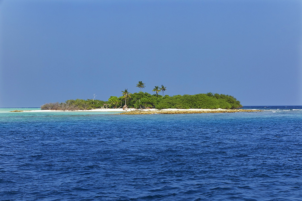 Madivaru island, Rasdhoo atoll, Maldives, Indian Ocean, Asia