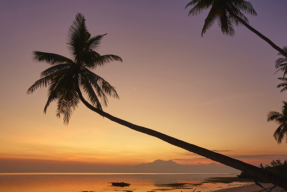 A dusk silhouette of coconut palms at Paliton beach, Siquijor, Philippines, Southeast Asia, Asia