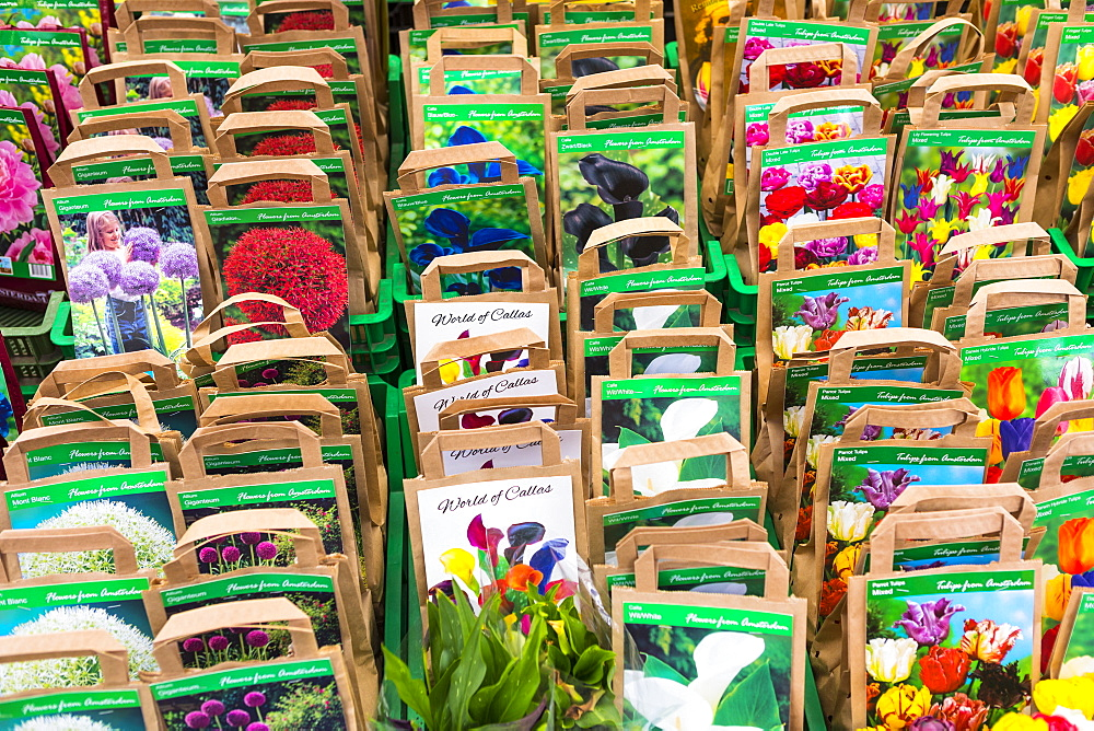 Flower seeds for sale in Bloemenmarkt, Amsterdam, Netherlands, Europe
