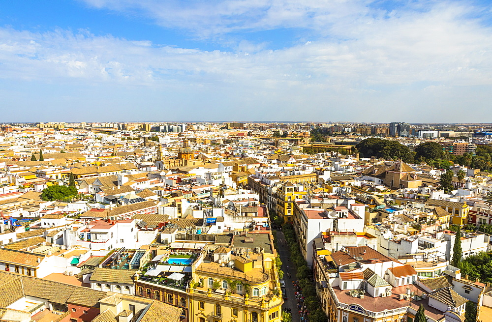 The view from the top of Seville Cathedral (Catedral Sevilla), UNESCO World Heritage Site, Seville, Andalucia, Spain, Europe - 1207-218
