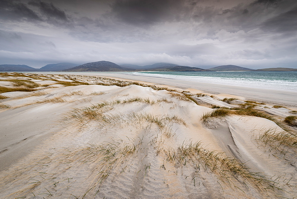 Luskentyre Beach, West Harris, Outer Hebrides. Sand dunes.