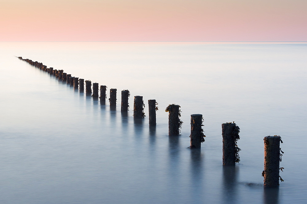 Groynes, Brean Beach, Somerset. - 1209-247